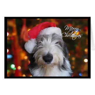 Cartão de Natal inglês velho do Sheepdog do papai