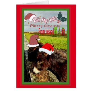 Cartão de Natal irlandês bonito dos asnos do papai