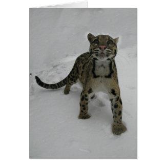 Cartão de Natal - leopardo nublado