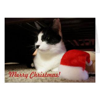 Cartão de Natal - Lola 1