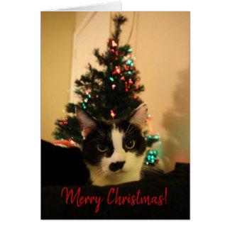 Cartão de Natal - Lola 2