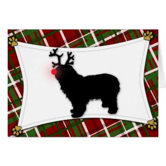 Cartão de Natal polonês da rena do Sheepdog da