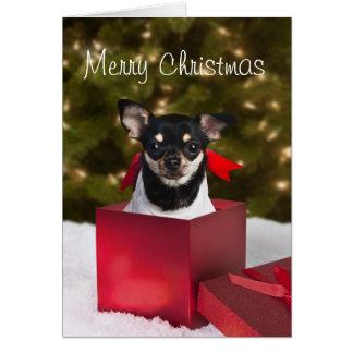 Cartão de Natal preto da chihuahua
