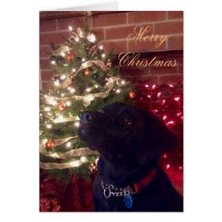 Cartão de Natal preto do laboratório