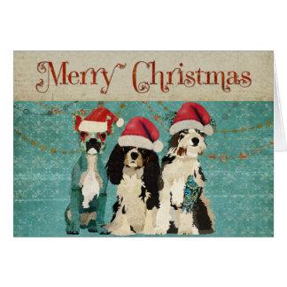 Cartão de Natal sábio de três cães