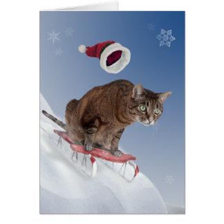 Cartão de Natal Sledding do gato