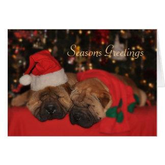 Cartão de Natal sonolento de Shar Pei