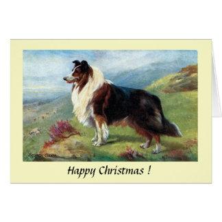 Cartão de Natal - um Collie escocês