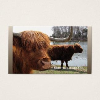 Cartão de negócios escocês do ~ do gado das