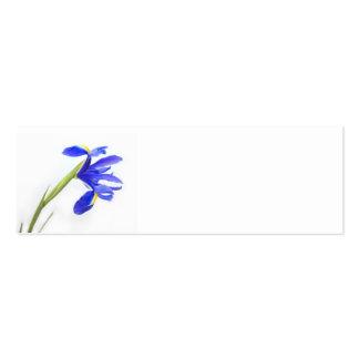 Cartão de nome do local do casamento - flor roxa d cartões de visita