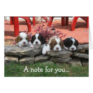 Cartão de nota
