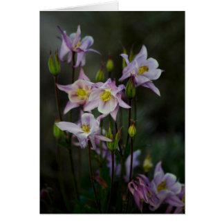 Cartão de nota aquilégia das flores