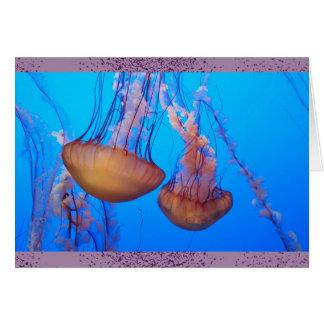 Cartão de nota bonito do vazio das medusa