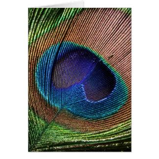 Cartão de nota bonito do vazio do azul da pena do
