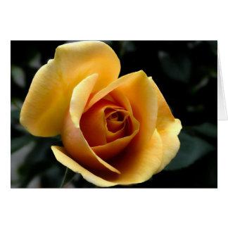 Cartão de nota cor-de-rosa do ouro, envelopes