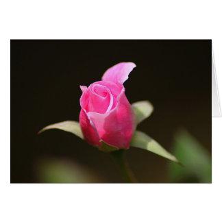 Cartão de nota cor-de-rosa do Rosebud, envelopes