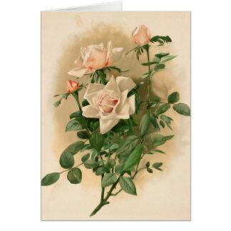 Cartão de nota cor-de-rosa dos rosas do vintage