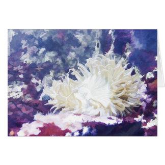 Cartão de nota da anêmona de mar