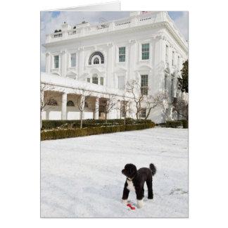 Cartão de nota da BO Obama - jardim de rosas