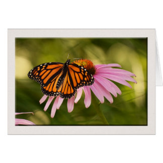 Cartão de nota da borboleta, vazio para dentro
