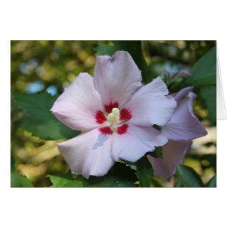 Cartão de nota da flor do hibiscus