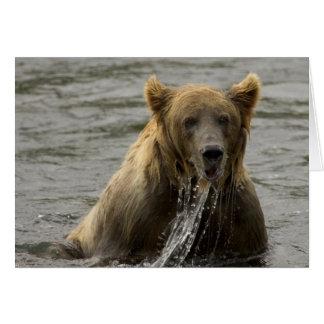 Cartão de nota da pesca do urso de Brown