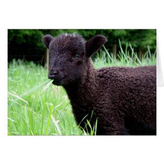 Cartão de nota das ovelhas negras de BaaBaa