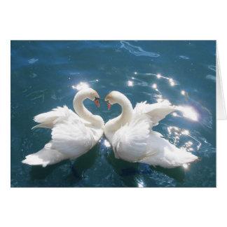 Cartão de nota de dois amantes da cisne