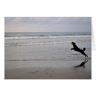 Cartão de nota de travamento do Frisbee da praia