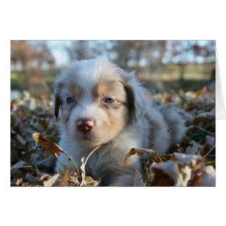 Cartão de nota do filhote de cachorro