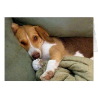 Cartão de nota do filhote de cachorro do Snuggle