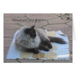 Cartão de nota do gato das memórias