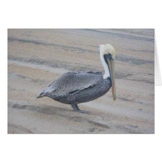 Cartão de nota do pelicano de Brown