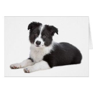 Cartão de nota do vazio do cão de filhote de