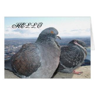 Cartão de nota dos pombos