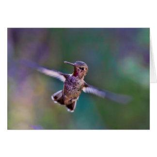 Cartão de nota, envelopes que incluem - colibri em