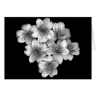 Cartão de nota floral do Posy de prata
