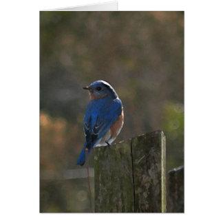 Cartão de nota oriental do Bluebird