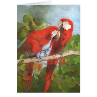 Cartão de nota - pássaros tropicais