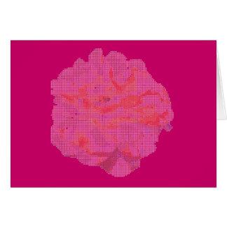 Cartão de nota -- Rosa do rosa no pequeno ponto