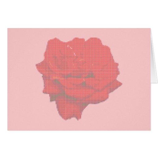 Cartão de nota -- Rosa vermelha no pequeno ponto