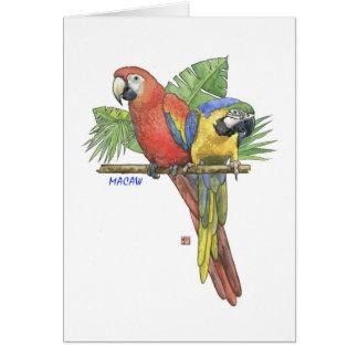 Cartão de nota tropical dos Macaws
