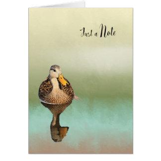 Cartão de nota vazio com pato Mottled