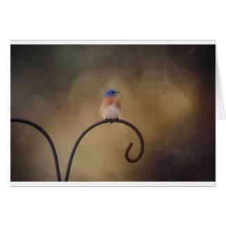 Cartão de nota vazio do Bluebird