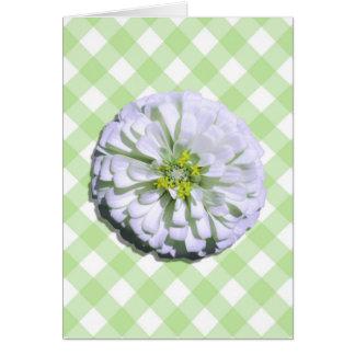 Cartão de nota - Zinnia branco Lemony na estrutura