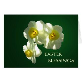 Cartão de páscoa do narciso do primavera