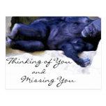 Cartão de pensamento/de falta de You_ Cartão Postal