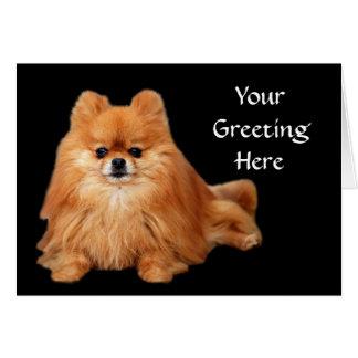 Cartão de Pomeranian