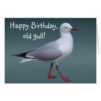 Cartão de prata da gaivota