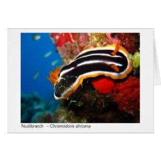 Cartão de presente de Nudibranch - 02